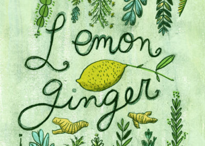 Fruit - Lemon Ginger